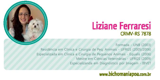 assinatura_artigo_liziane