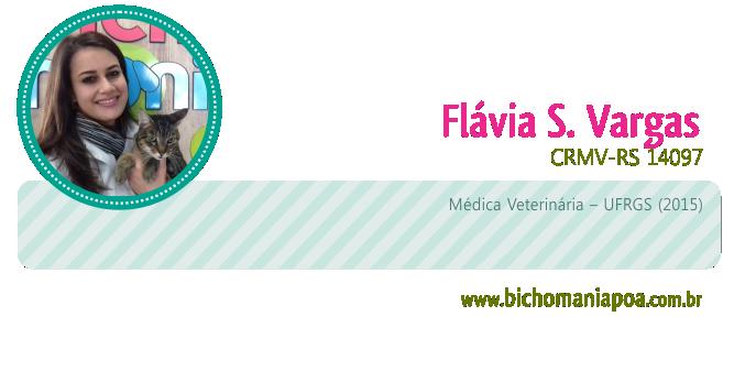assinatura_artigo flavia